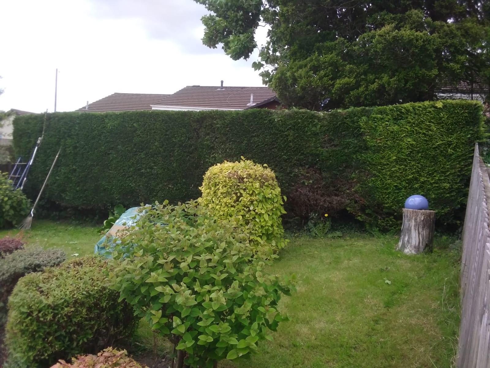 Garden maintenance Bristol