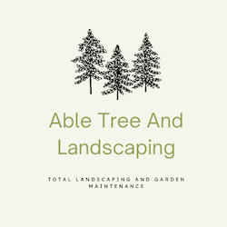 Able tree And Landscapes